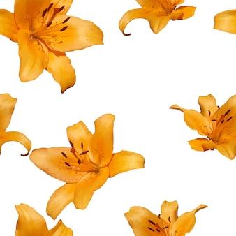 Seamless pattern di lilia