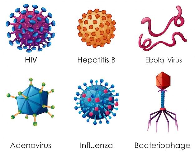 Sei tipi di virus su sfondo bianco
