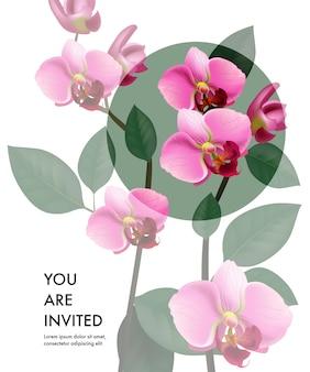 Sei un modello di carta invitato con orchidee rosa trasparenti e un cerchio verde