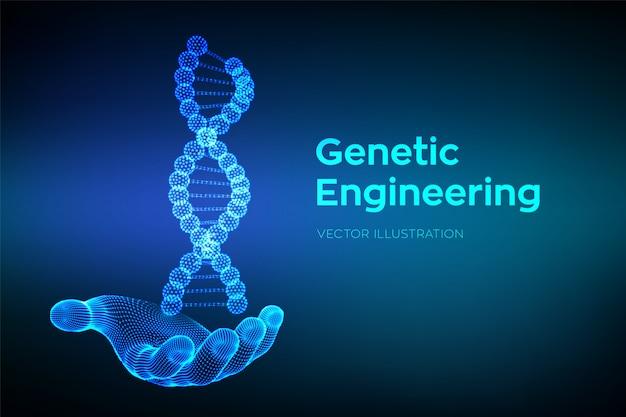 Sequenza di dna in mano. maglia metallica della struttura delle molecole di wireframe dna.