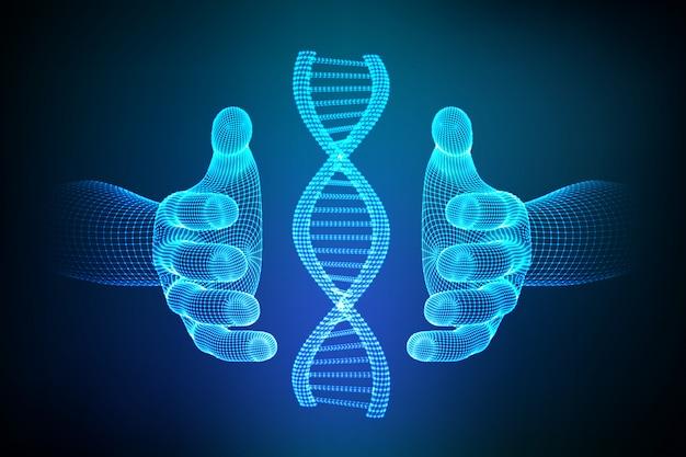 Sequenza di dna nelle mani. maglia metallica della struttura delle molecole di wireframe dna.