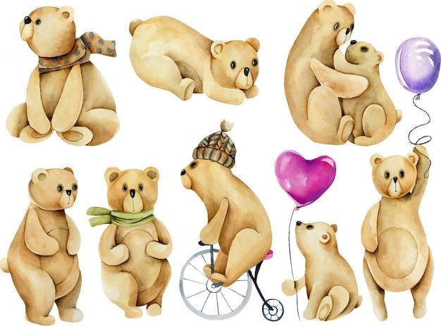 Serie di illustrazioni di orsi carini acquerello