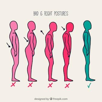 Serie di posture correttamente e non correttamente disegnate a mano