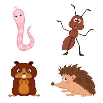 Serie di simpatiche illustrazioni di animali dei cartoni animati: verme, formica, riccio e castoro