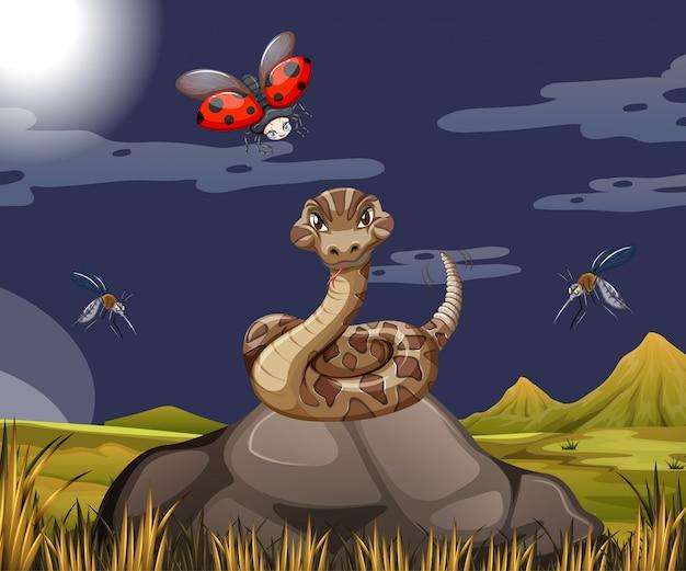 Serpente con coccinella nella scena della foresta di notte