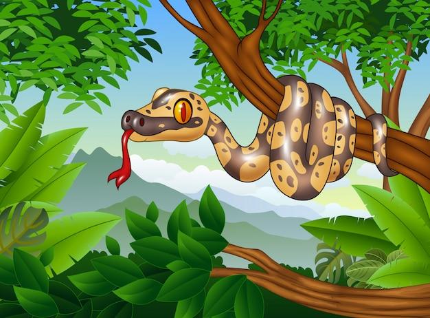 Serpente di pitone cartone animato strisciante su un ramo