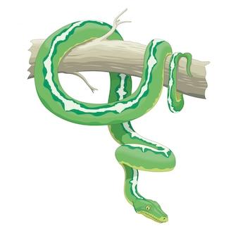 Serpente su un ramo