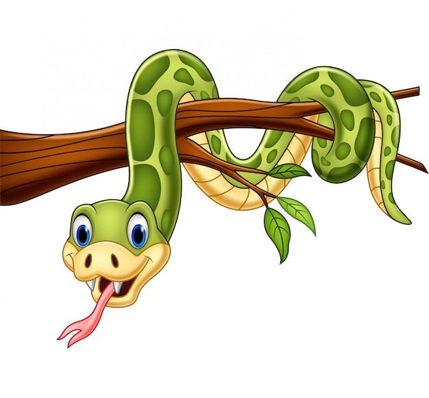 Serpente verde cartone animato sul ramo di un albero