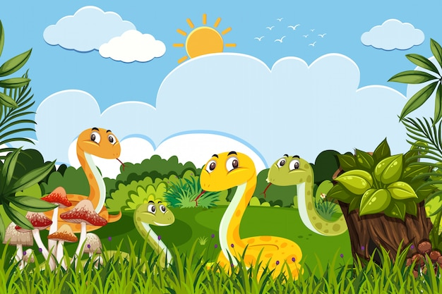 Serpenti nella scena della natura