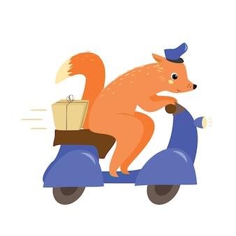Servizio di consegna. volpe su un ciclomotore con un pacco. postino
