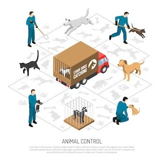 Servizio di controllo degli animali isometrico