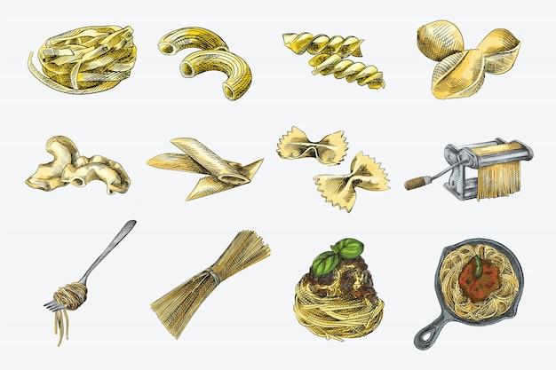 Set colorato di pasta diversa. fettuccine, sedanini rigati, girandole, conchiglioni rigati, pipe rigatti, mezze penne rigate, farfalle, spaghetti arrotolati su una forchetta, spaghetti