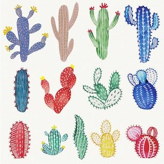 Set di acquerello cactus