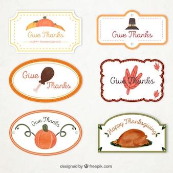 Set di acquerello decorativo ringraziamento adesivi giorno