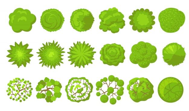 Set di alberi verdi