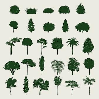 Set di alberi