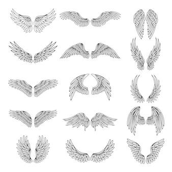 Set di ali stilizzate differenti per loghi