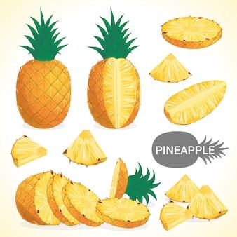 Set di ananas in vari stili di formato vettoriale