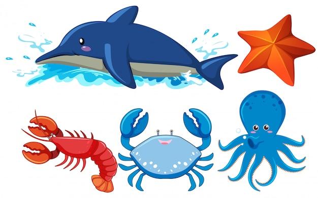 Set di animali acquatici