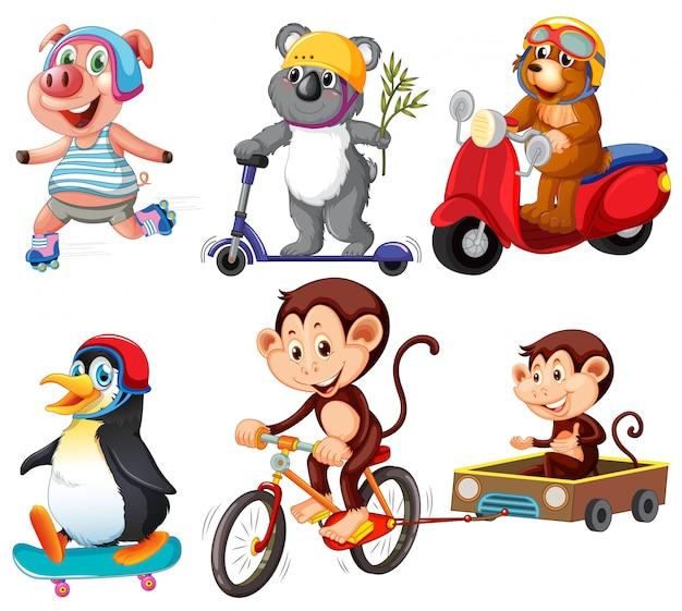 Set di animali dei cartoni animati
