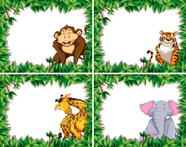 Set di animali nella cornice della natura