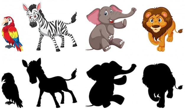 Set di animali selvatici