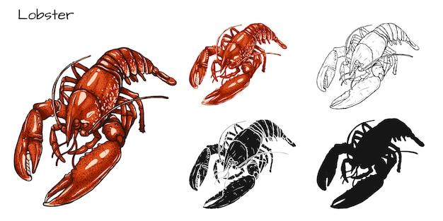 Set di aragosta