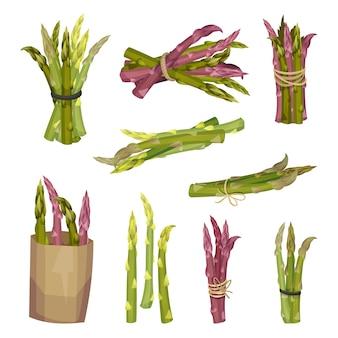 Set di asparagi in diverse confezioni