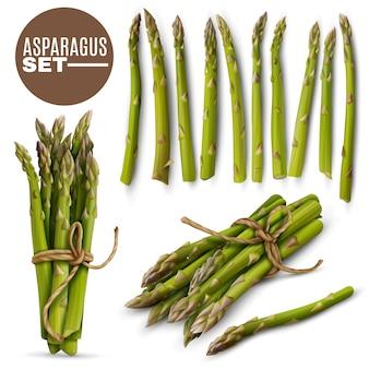 Set di asparagi teneri freschi