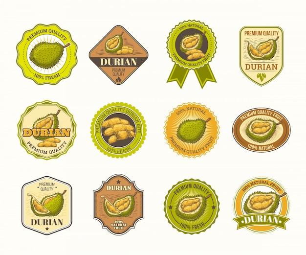 Set di badge vettore in bianco e nero, adesivi, segni di alta qualità, con frutta durian