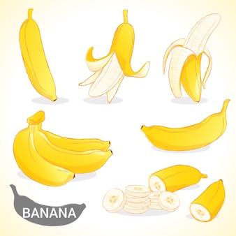 Set di banana in vari stili formato vettoriale