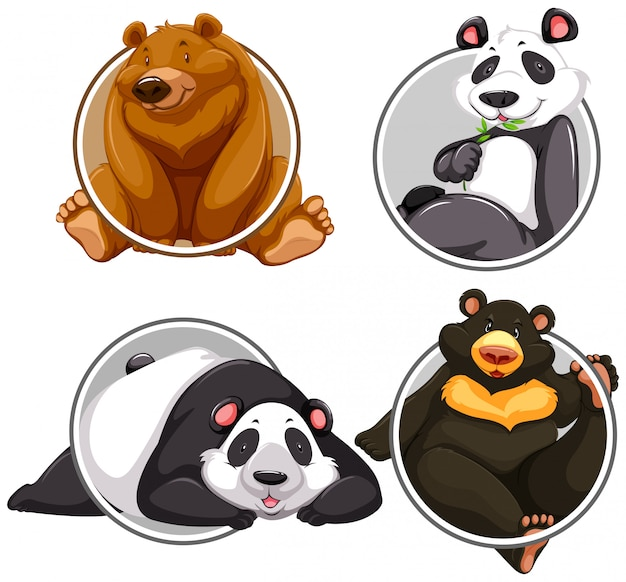 Set di banner di diversi orso
