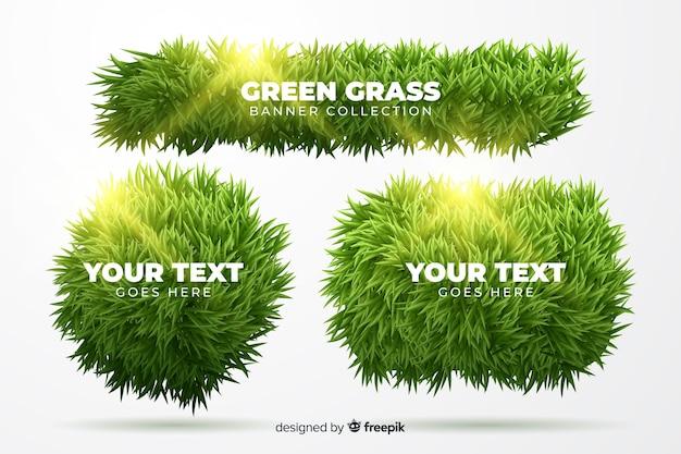 Set di banner di erba realistica
