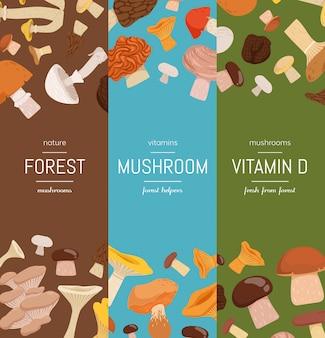 Set di banner web verticale di set con set di funghi di cartone animato