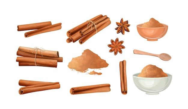 Set di bastoncini di cannella e polvere. ingrediente piccante naturale per alimenti. illustrazione