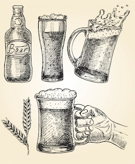 Set di birra. illustrazione vettoriale di bicchieri e tazza, luppolo, malto e bottiglia. oktoberfest