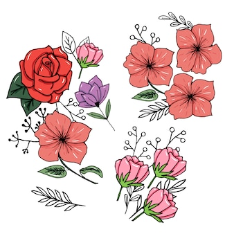 Set di botanica
