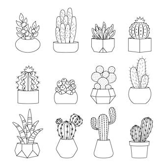 Set di cactus e piante grasse in stile linea