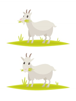 Set di capra divertente.