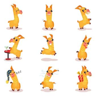Set di caratteri divertenti del fumetto del lama, animale sveglio dell'alpaga nelle situazioni differenti illustrazioni su una priorità bassa bianca