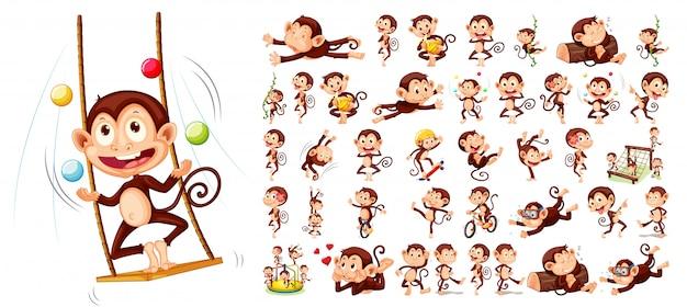 Set di caratteri scimmia
