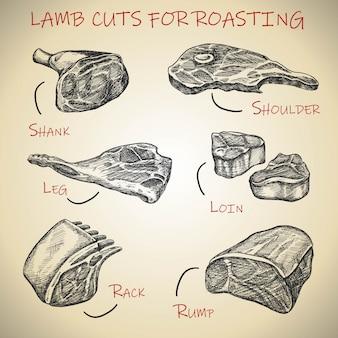 Set di carni disegnate a mano per tagli di agnello per arrostire.