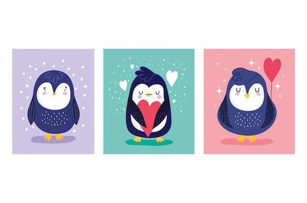 Set di carte di pinguini