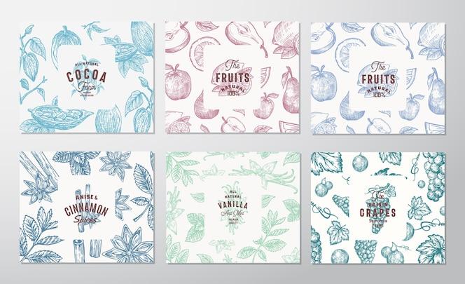 Set di carte disegnate a mano di uva, frutta, fave di cacao, menta, noci e spezie.