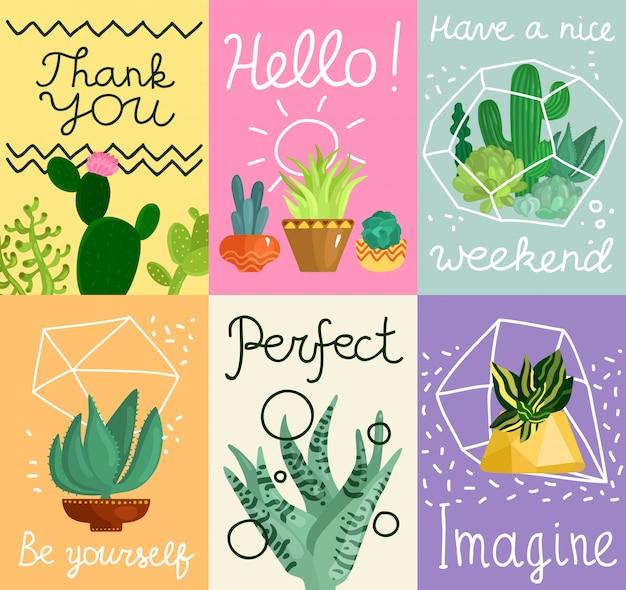 Set di carte succulente
