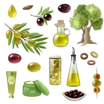 Set di cartoni animati d'oliva