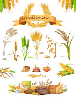 Set di cereali e cereali su sfondo bianco