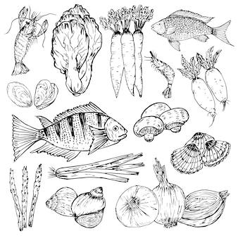 Set di cibo biologico disegnato a mano. erbe biologiche, spezie e frutti di mare. disegni di cibo sano impostato
