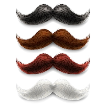 Set di colori baffi finti