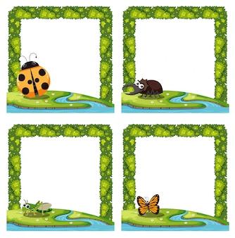Set di confine natura insetto